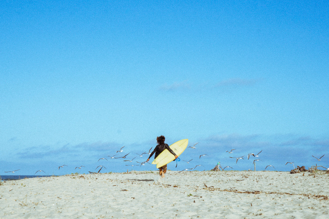 Pristine surdboards shaper Hugo chasing doves with his surfboard on the beach