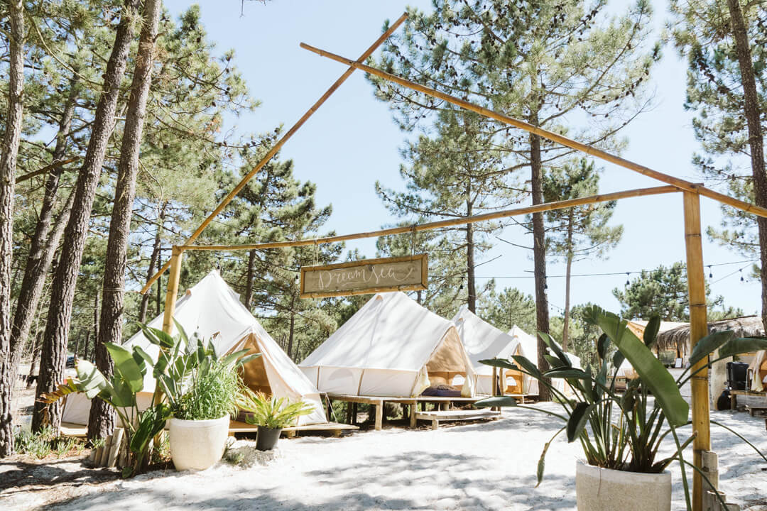 The entrance of Dreamsea Alentejo, Portugal. You can see bell-tents, plants and pinetrees.