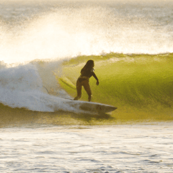 Free surf page